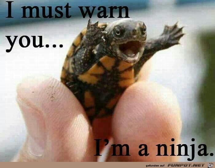 Ich warne Dich...