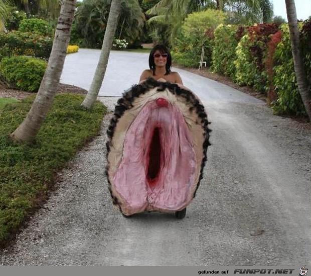 mode-auf-hawai