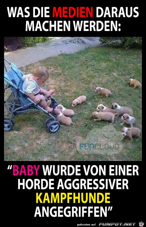 Baby wurde angegriffen