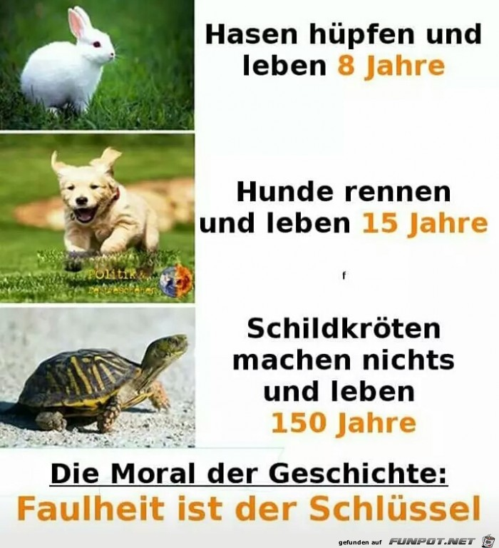 Die Moral