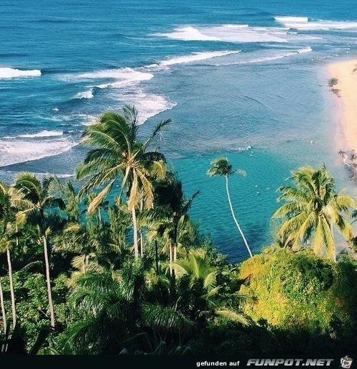 Blick an die Küste