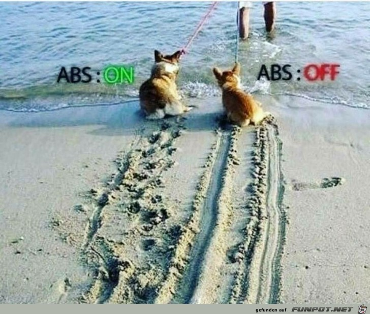 ABS on/ABS off