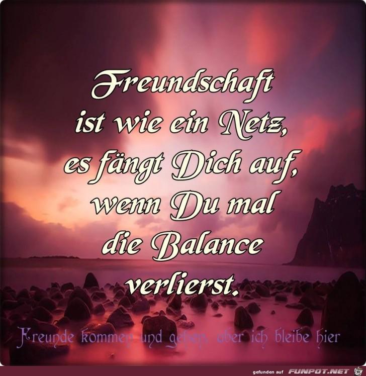 Freundschaft ist wie ein Netz