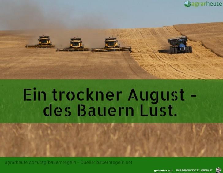 Bauernregel 2. Augustwoche