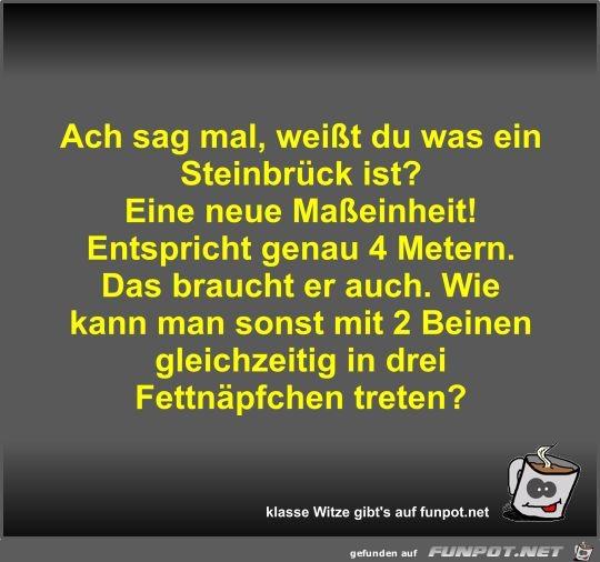 Ach sag mal, weißt du was ein Steinbrück ist?
