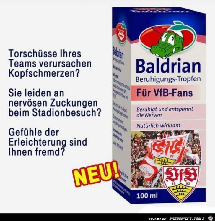 Für VfB-Fans