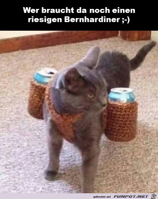 Tierischer Getränkeservice