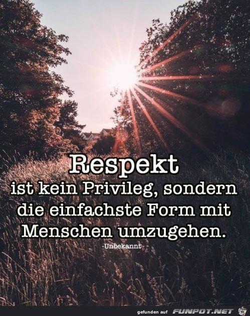 respekt ist kein Privileg