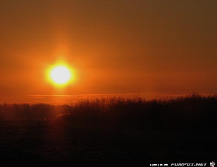 Sonnenuntergang in Kollmar an der Elbe 2