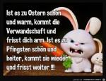 Die-lieben-Verwandten.jpg auf www.funpot.net