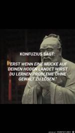 Konfuzius-sagt....jpg auf www.funpot.net