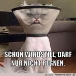 Windstill.jpg auf www.funpot.net