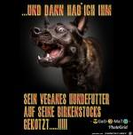 Böser-Hund.jpg auf www.funpot.net