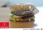Burger.jpg auf www.funpot.net