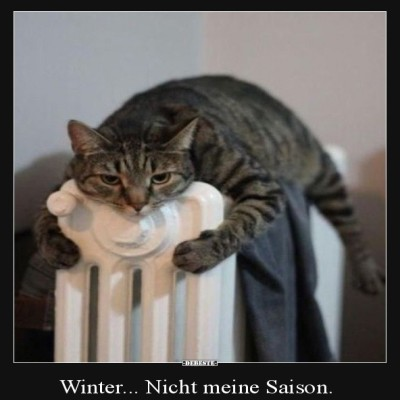 Der-Winter.jpg von Desiree