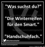 Winterreifen-für-Smart.jpg auf www.funpot.net