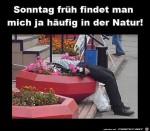 In-der-Natur.jpg auf www.funpot.net
