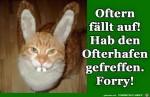 Ostern.jpg auf www.funpot.net