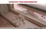 Wintereinbruch.jpg auf www.funpot.net