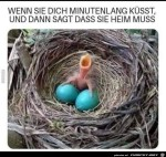 Dicke-Eier.jpg auf www.funpot.net