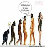 Evolution.png auf www.funpot.net