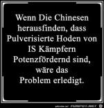 Die-Chinesen.jpg auf www.funpot.net