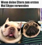 Skype-Gesichter.jpg auf www.funpot.net