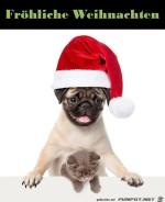 Fröhliche-Weihnachten.jpg auf www.funpot.net