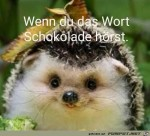 Schoki-her.jpg auf www.funpot.net