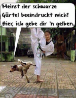 Gelber-Gürtel.png auf www.funpot.net