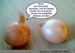 Arme-Zwiebel.png auf www.funpot.net