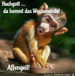 Hachgott---da-kommt-das-Wochenende........jpg auf www.funpot.net