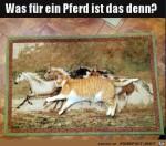 Komisches-Pferd.jpg auf www.funpot.net