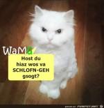 Schlofn-geh.jpg auf www.funpot.net