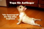 Yoga-für-Anfänger.jpg auf www.funpot.net