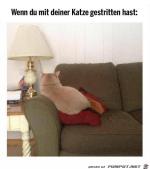 Beleidigte-Katze.png auf www.funpot.net