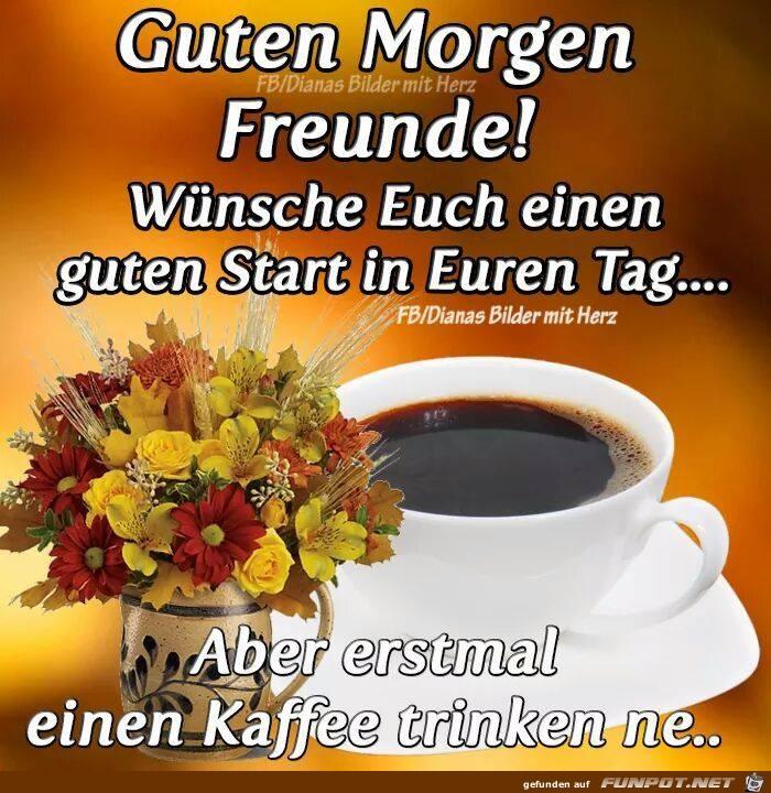 Guten Morgen Freunde