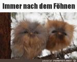 Nach-dem-Föhnen.png auf www.funpot.net