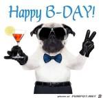 happy-bday.jpg auf www.funpot.net