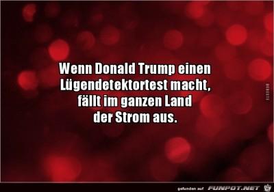 Trump.jpg von Fabi
