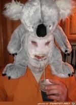 Verstörende-Bilder-9.jpg auf www.funpot.net