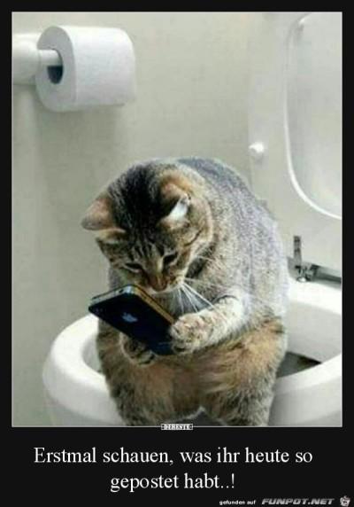 Erst-mal-das-Handy-checken.jpg von Elena