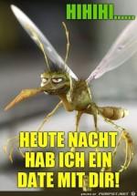 Blöde-Stechmücke.jpg auf www.funpot.net