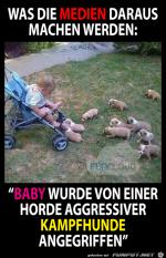 Baby-wurde-angegriffen.png auf www.funpot.net