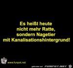 Ratte.jpg auf www.funpot.net