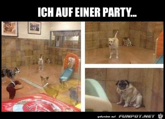 Klasse Party