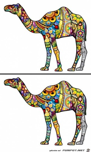 Finde-die-2-Fehler-.jpg auf www.funpot.net