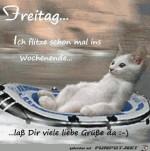 Freitag-Ich-flitze-schell.jpg auf www.funpot.net