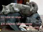 its-time-to-relax.jpg auf www.funpot.net
