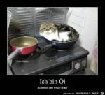 Bin-Oel.jpg auf www.funpot.net